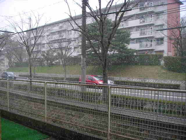 雪が・・・!_a0112220_19443612.jpg