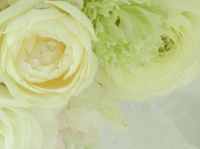 花冠~クラウン バラの花で _a0042928_2143989.jpg