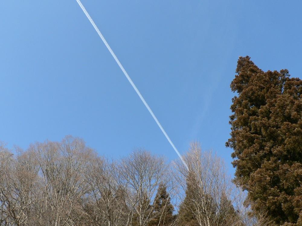 飛行機雲_d0001843_23312497.jpg