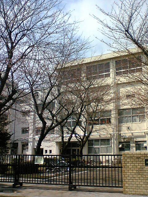 まだ咲いてなかった小学校の桜_d0027243_13292.jpg