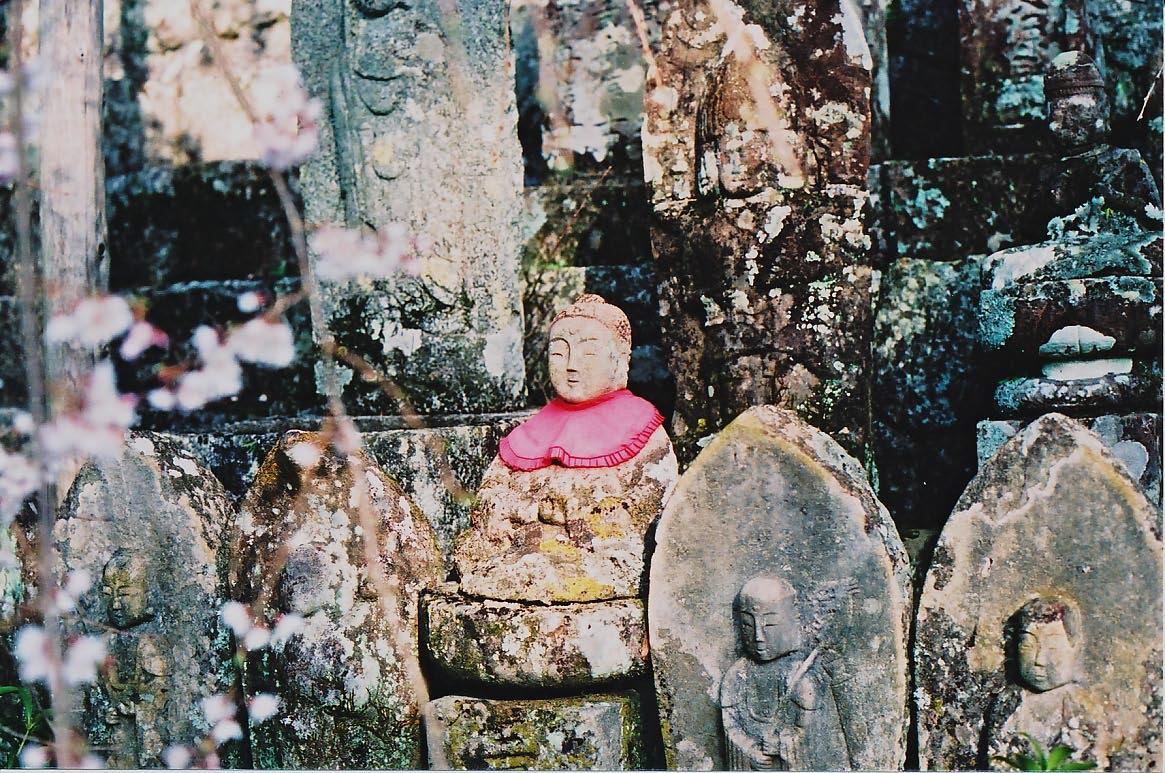 龍祥寺の桜_e0156251_2248203.jpg