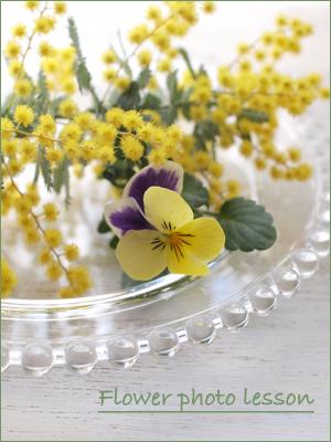お花のフォトレッスンのご案内 改訂版_e0158653_23243842.jpg