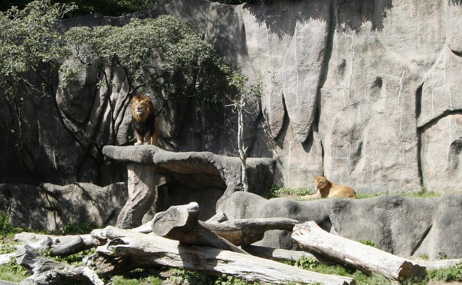 浜松市動物園  浜名湖遊覧_a0107574_224029100.jpg