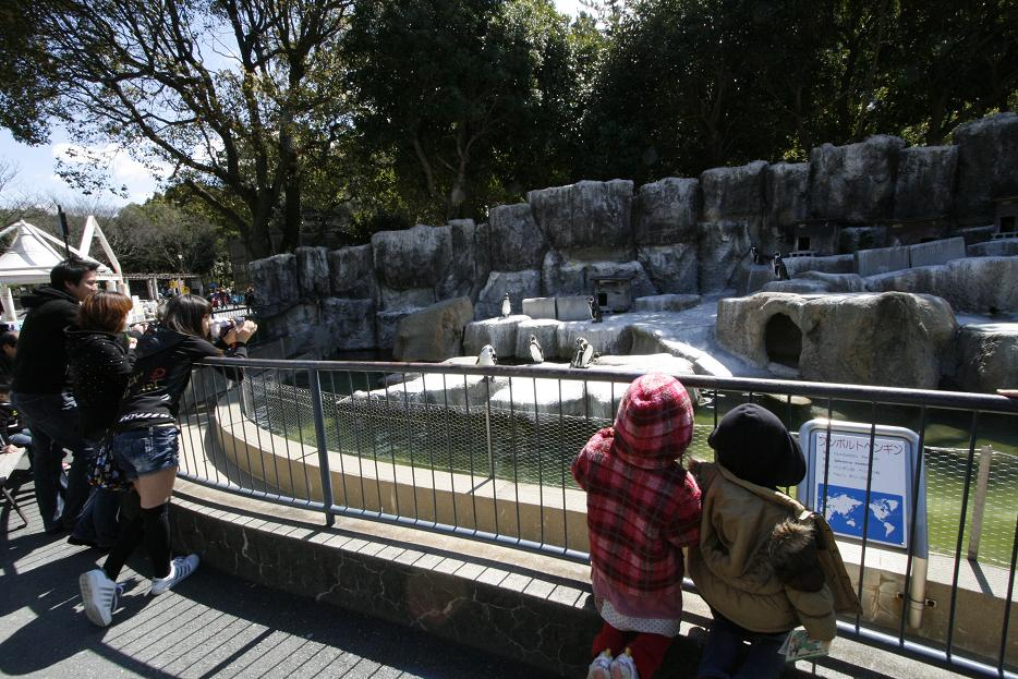 浜松市動物園  浜名湖遊覧_a0107574_22414234.jpg