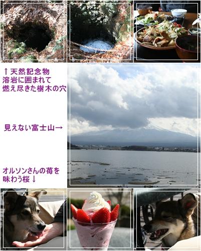 c0124577_16101137.jpg