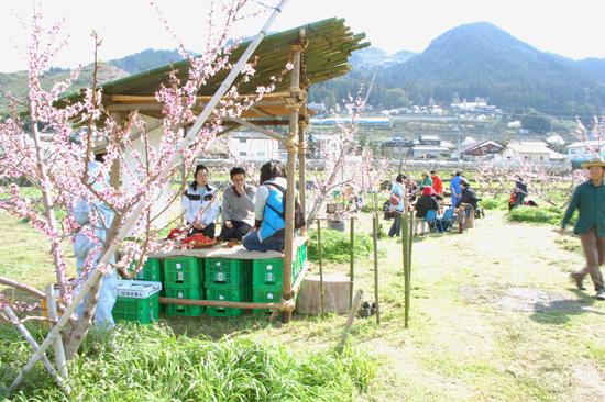 桃の花見当日_f0120395_2295281.jpg