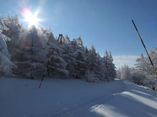 雪景色の池ノ平湿原_e0120896_11101720.jpg