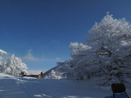 雪景色の池ノ平湿原_e0120896_11132294.jpg