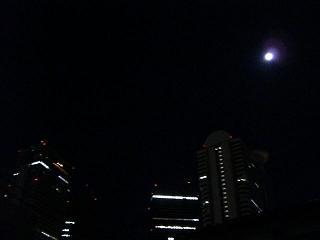 眩しい月_a0057402_15232277.jpg
