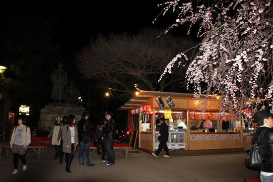 円山公園 夜桜_e0048413_20502798.jpg