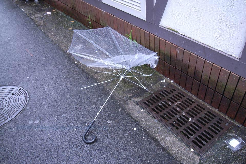 傘の運命 その1_e0132518_072969.jpg