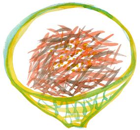 f0135024_2011949.jpg