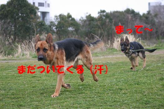 c0192541_23411537.jpg