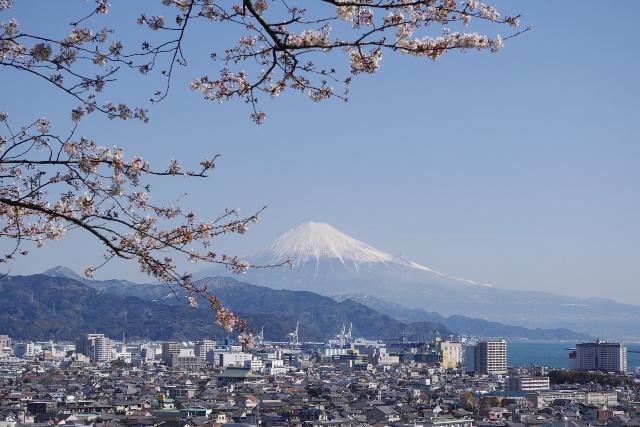 3月30日(火) 桜 富士 港_d0082944_2341244.jpg