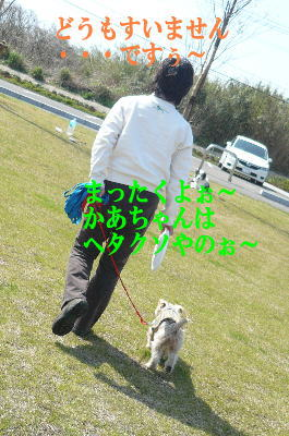 d0013645_1519110.jpg
