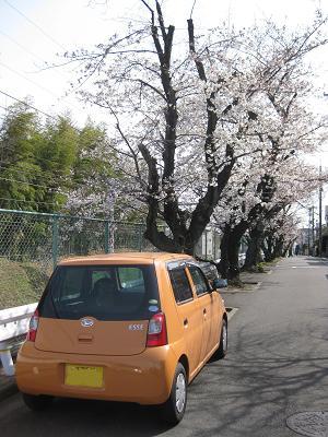 長岡京市ポスティング_e0128446_18201548.jpg