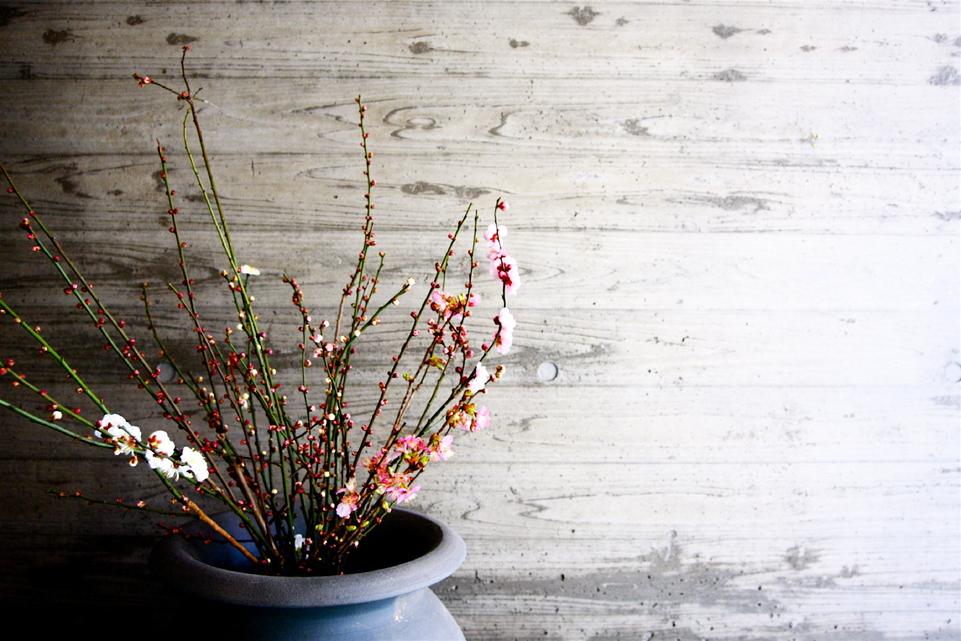 「鶴ヶ島の家」 アプローチ 玄関 坪庭 居間へ……_f0230666_112135.jpg