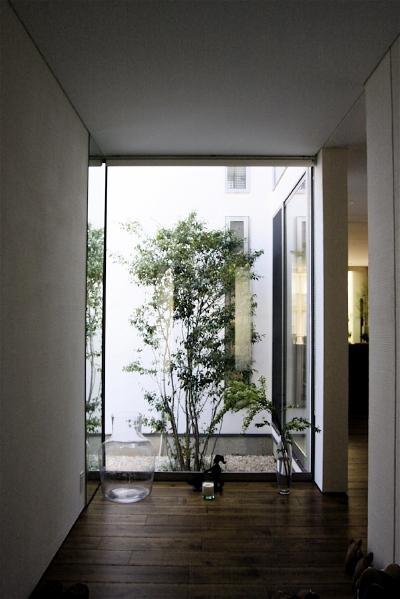 「鶴ヶ島の家」 アプローチ 玄関 坪庭 居間へ……_f0230666_15211615.jpg