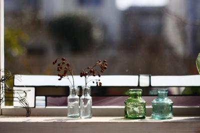 「鶴ヶ島の家」 garden、potting shed_f0230666_1731864.jpg