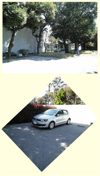 f0079967_1656514.jpg