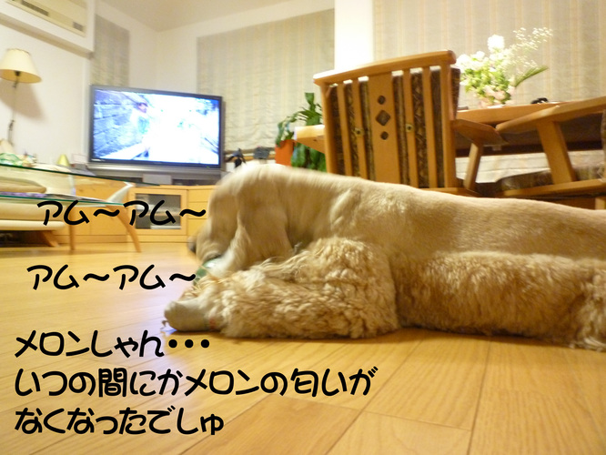 f0218182_11215511.jpg