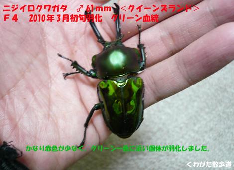 f0183484_22281085.jpg