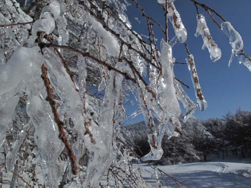 氷の音色_e0120896_1141132.jpg
