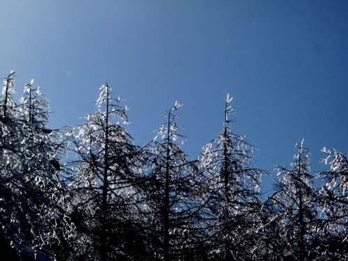 氷の音色_e0120896_11433379.jpg
