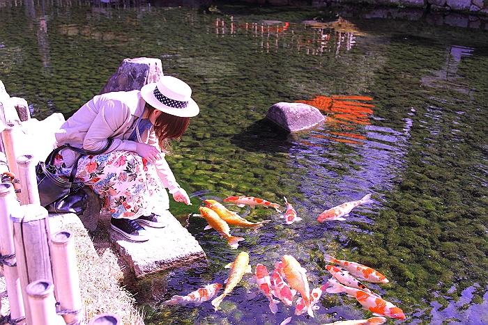 """""""日本三名園-岡山後楽園-""""_a0140608_8371393.jpg"""