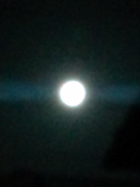 月夜はそれを知っている_b0032617_3315100.jpg