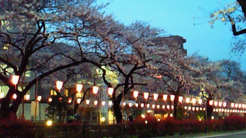 桜スイーツ_c0190424_22134171.jpg