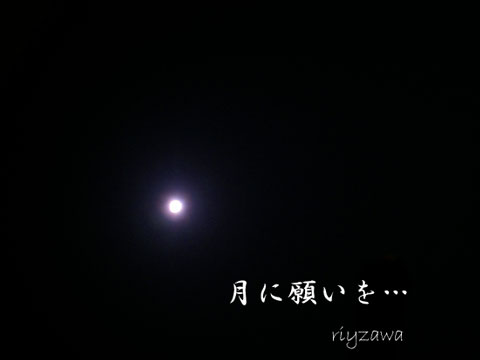 a0143435_9311136.jpg