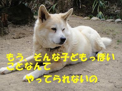 c0211642_11284856.jpg