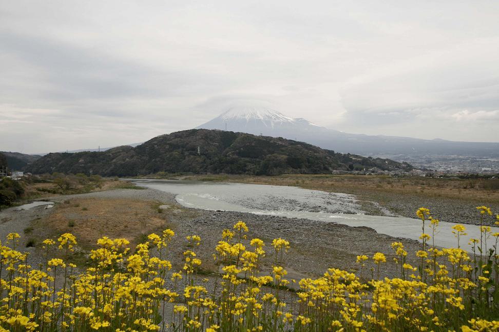 だいり 「富士山スゲ~!登りたい!」_a0107574_20262448.jpg