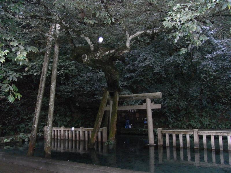鹿島神宮_c0173978_0155225.jpg