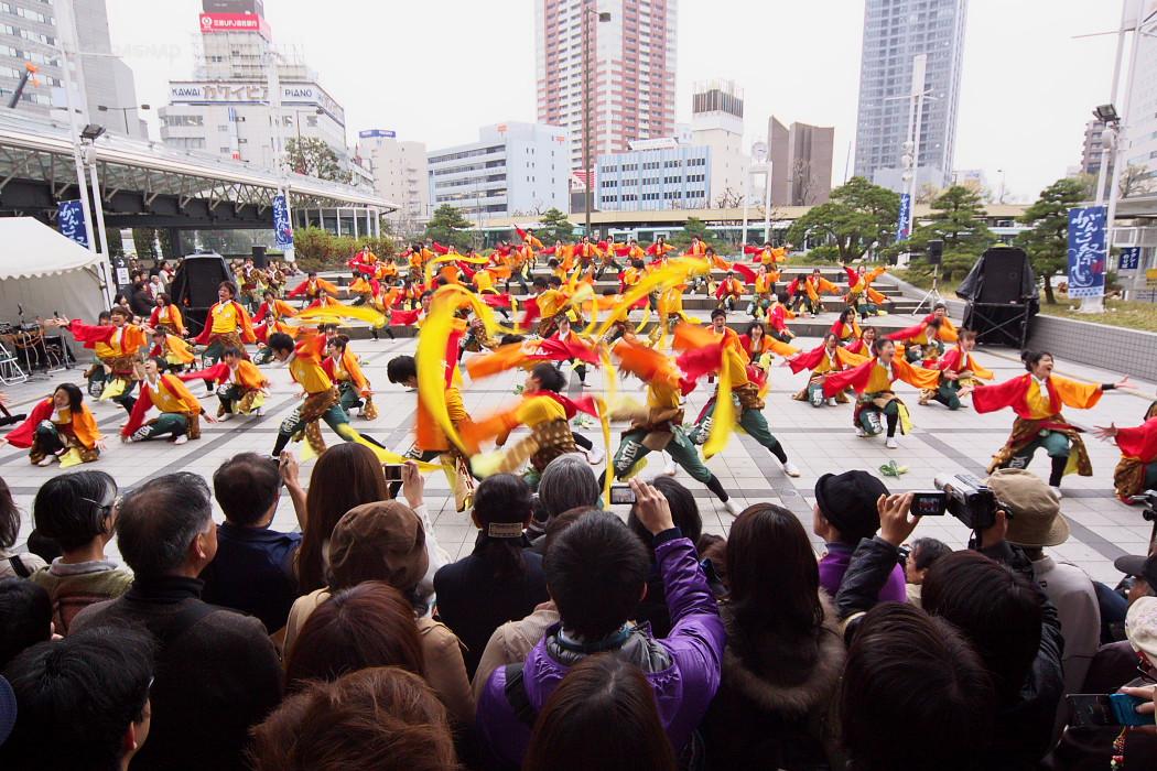 がんこ祭り2010:その9_c0187584_9415086.jpg