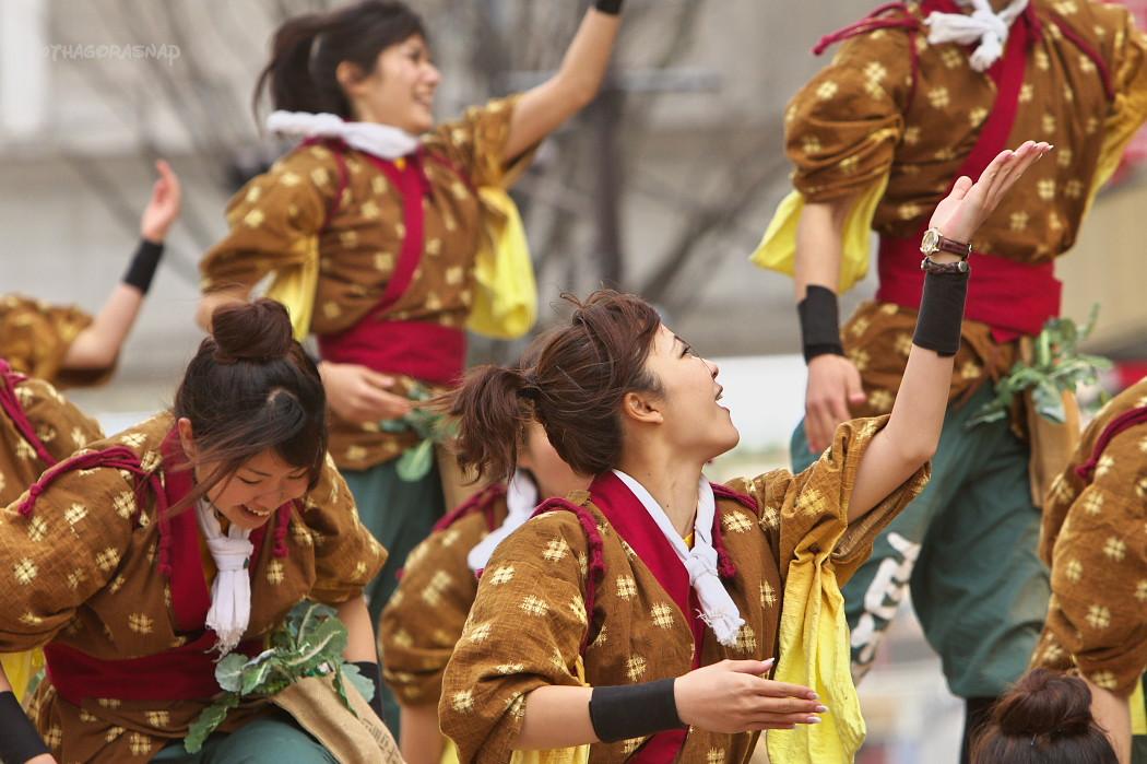がんこ祭り2010:その9_c0187584_9445718.jpg