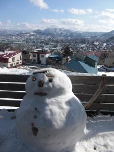 こんどこそ、雪解けな日々_c0125899_17183168.jpg