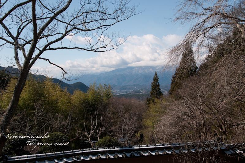海岸寺もゆっくりゆっくり冬から春へ_c0137403_112509.jpg