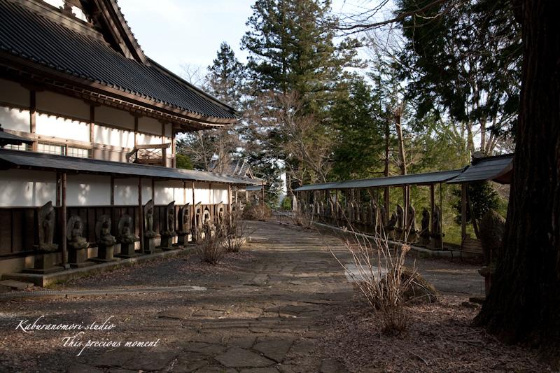 海岸寺もゆっくりゆっくり冬から春へ_c0137403_11255434.jpg