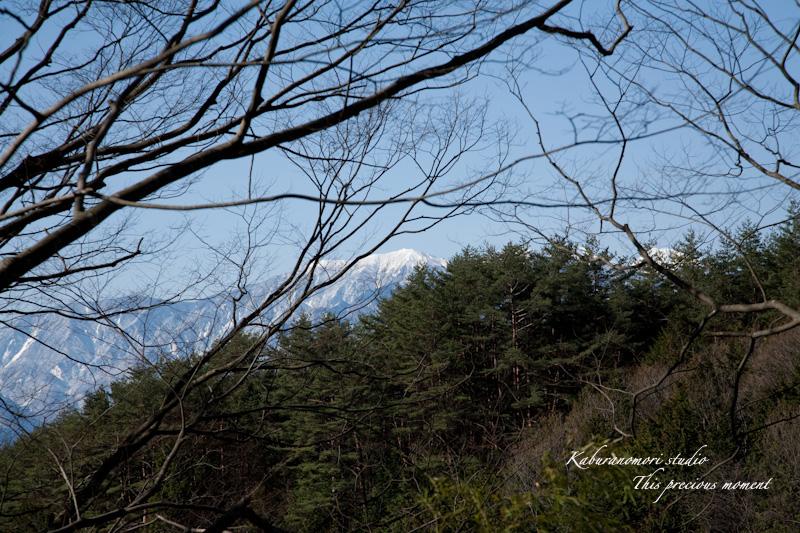 海岸寺もゆっくりゆっくり冬から春へ_c0137403_116255.jpg