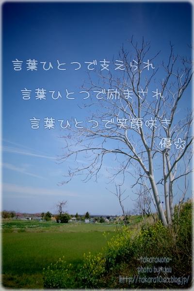 f0111908_14362688.jpg