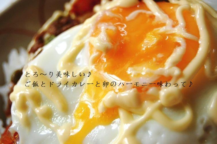 和風ドライカレー卵のっけ丼 & 行ってきま~す☆_d0104926_2282513.jpg