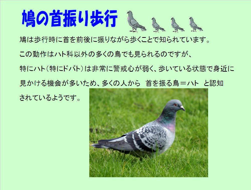 f0131929_9371814.jpg
