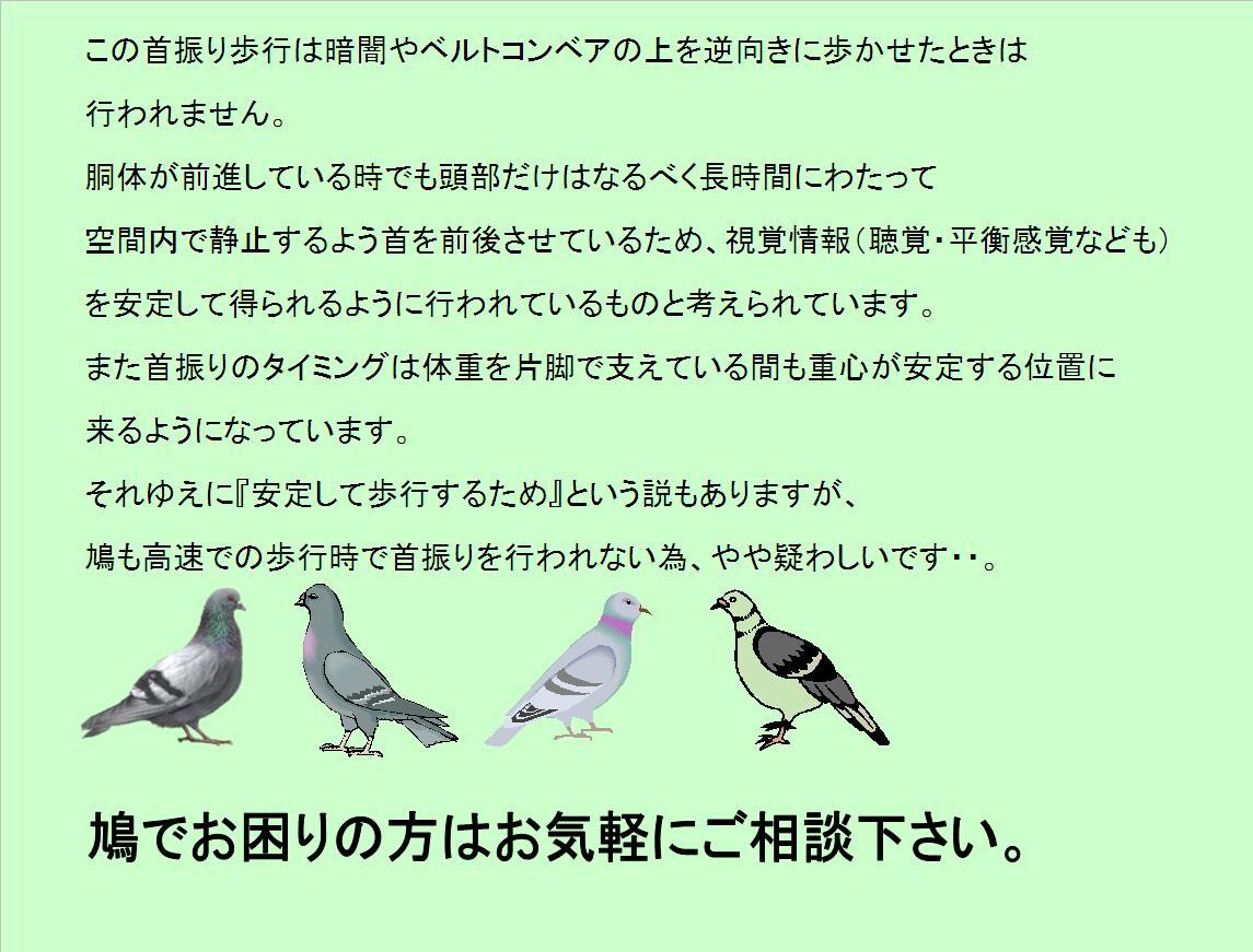 f0131929_9374034.jpg