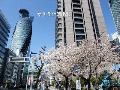 最後の目的地・・・名古屋のモーニング_f0023333_1119173.jpg