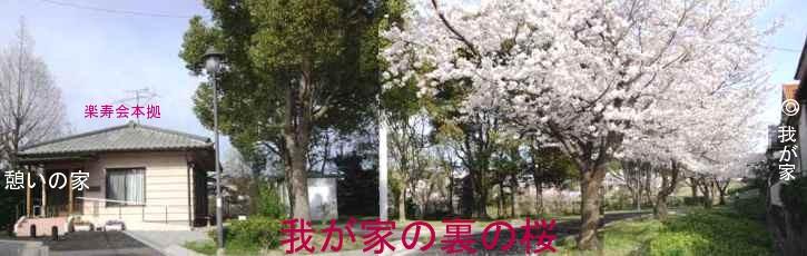b0012636_19492961.jpg