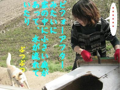 b0151748_21342214.jpg