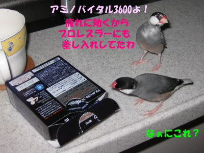 b0158061_21165843.jpg