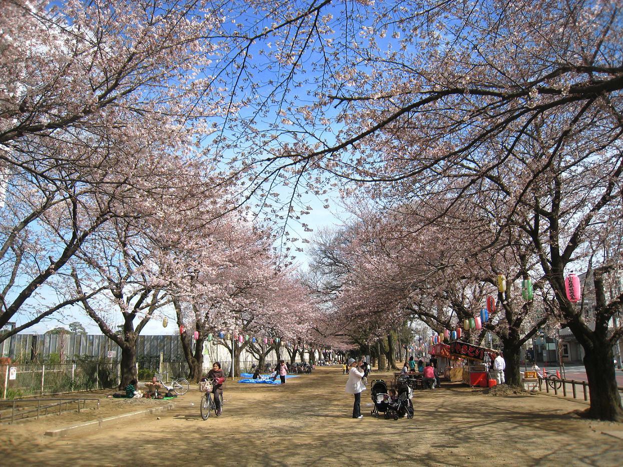 春の空気_a0107574_20303935.jpg